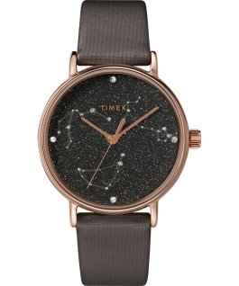 Montre Celestial Opulence 37mm Bracelet texturé Titane/Marron-CAPRICORNE,VERSEAU,POISSON large