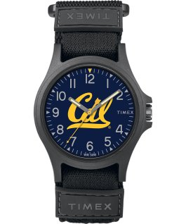 Pride U Cal Berkeley Golden Bears  large