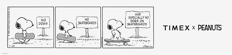 Timex x Peanuts Banner.